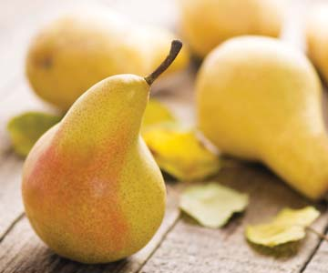 Pick of the month - Pears - 308 - CO